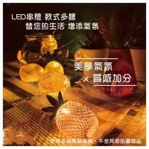 鐵樹鳳梨 裝飾彩燈 吊飾 LED燈 露營燈 串燈